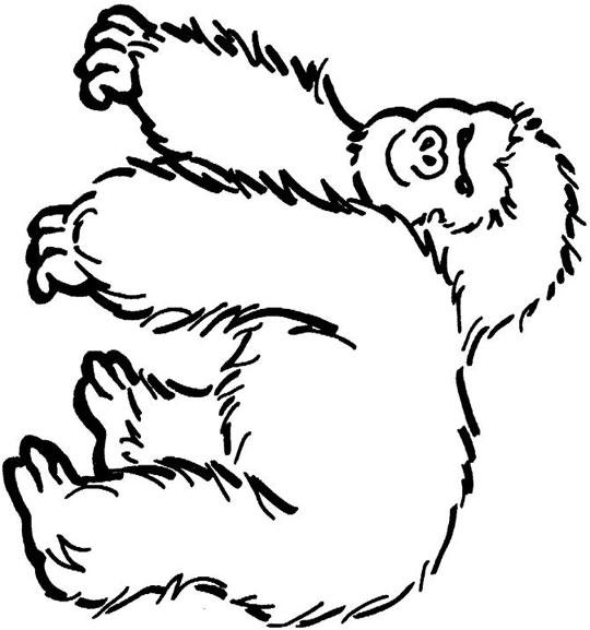 dibujo de gorila para niño